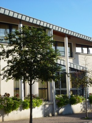 Crosne école primaire 6